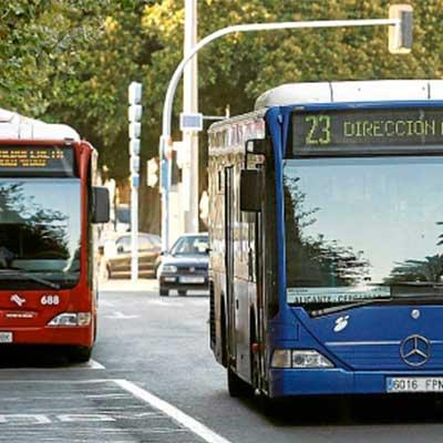 SeoparaSeos Donde Ulab Alicante Bus